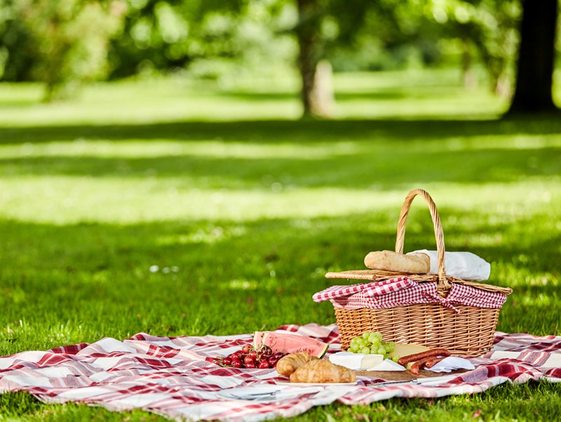 Goods for a picnic and outdoor recreation