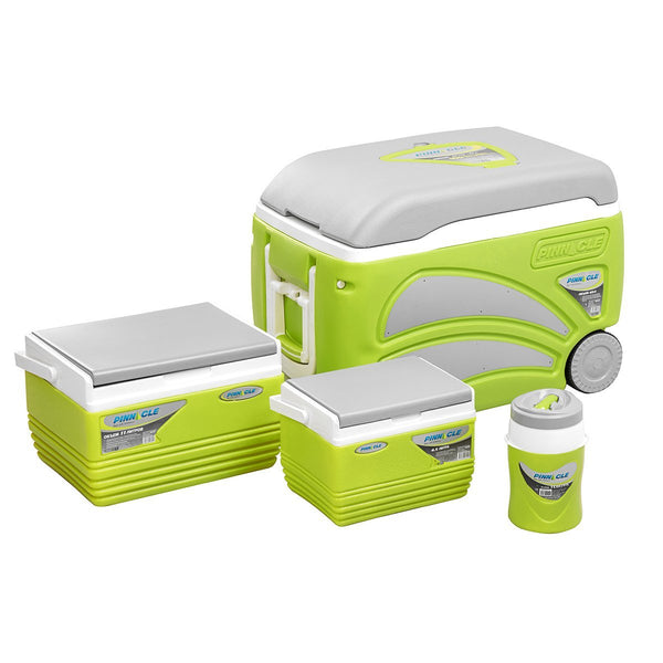Proxon Set of Ice Chests (4 pcs in set), Hard-sided Coolers for Camping