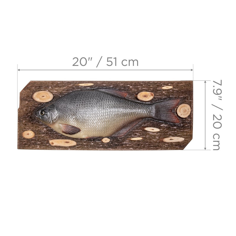 Bream Fish Souvenir, Gift for Angler Hunter, Shop Cafe Decoration