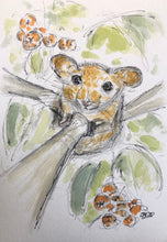 Load image into Gallery viewer, Dormouse