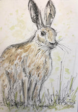 Load image into Gallery viewer, Long Eared Hare in the Wild