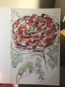 Single Rose Bloom Greetings Card