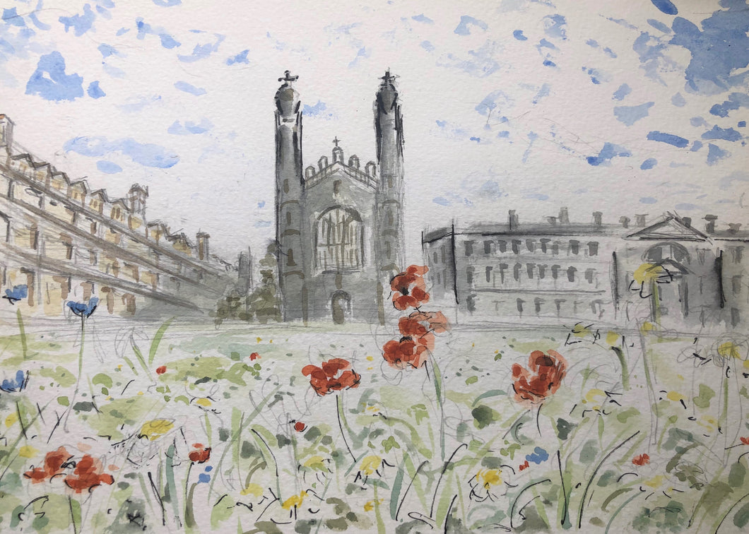 Kings College, The Back's summer meadow view
