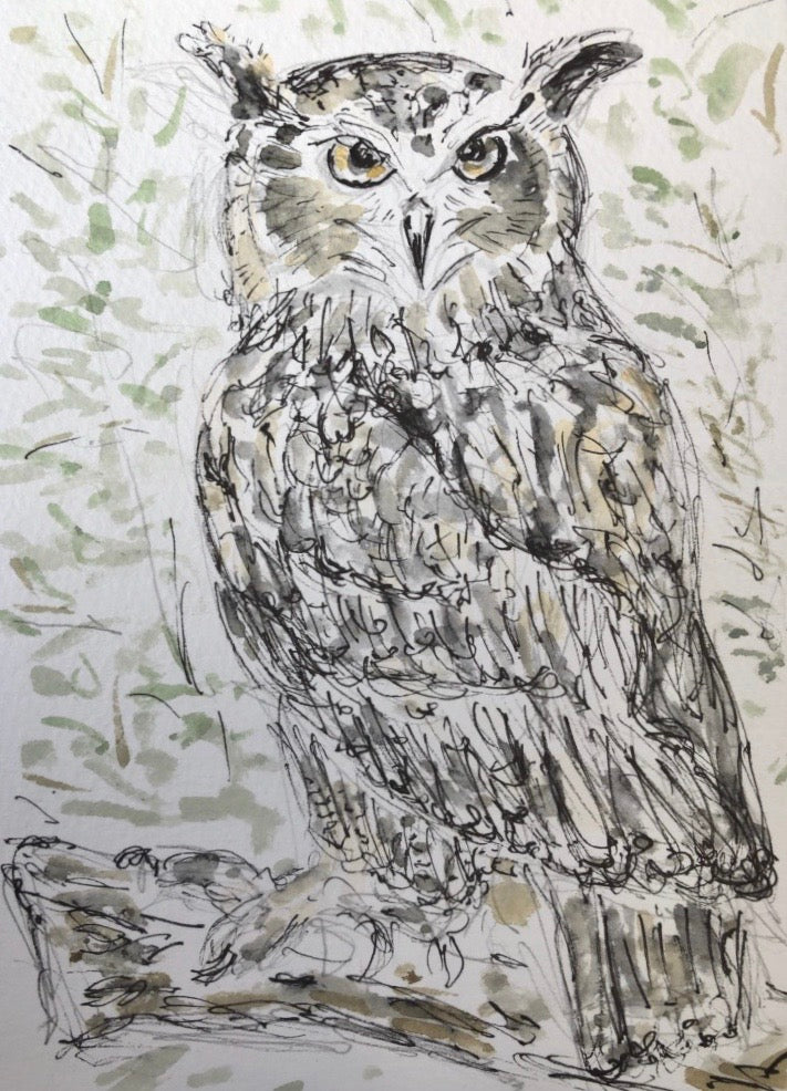 Owl watercolour
