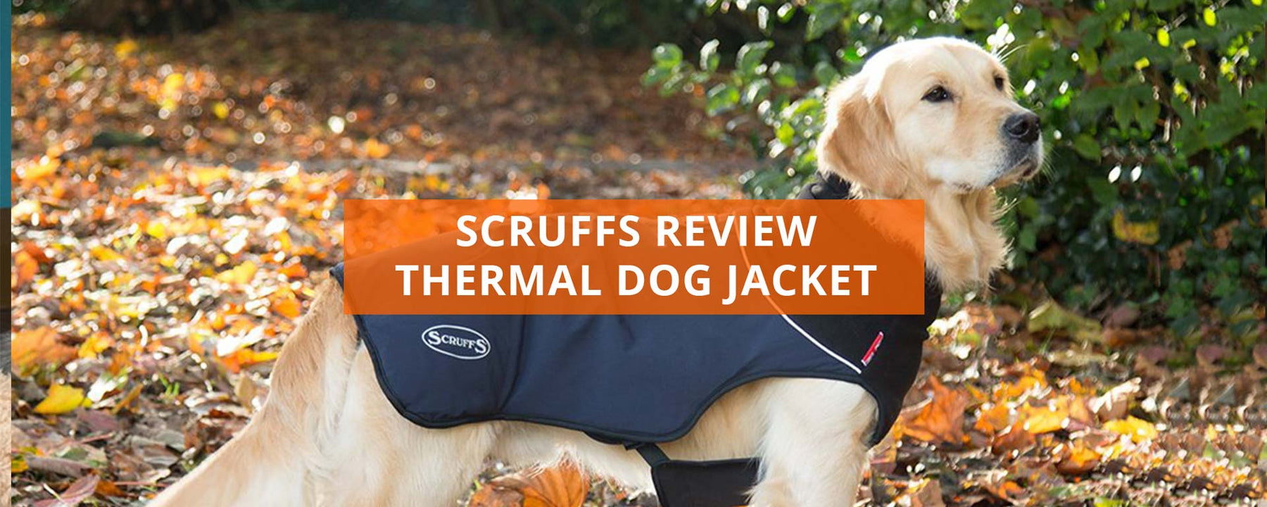 Scruffs Thermal Dog Jacket Review