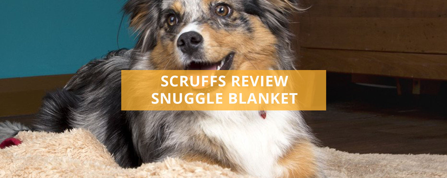 Scruffs Reversible Snuggle Blanket Review