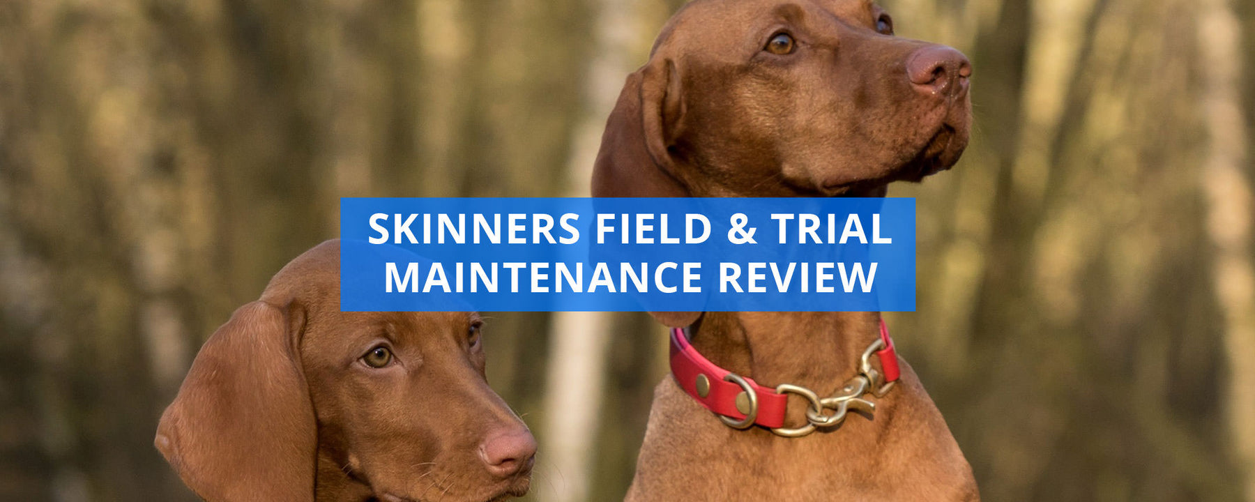 Skinners Field And Trial Maintenance Review