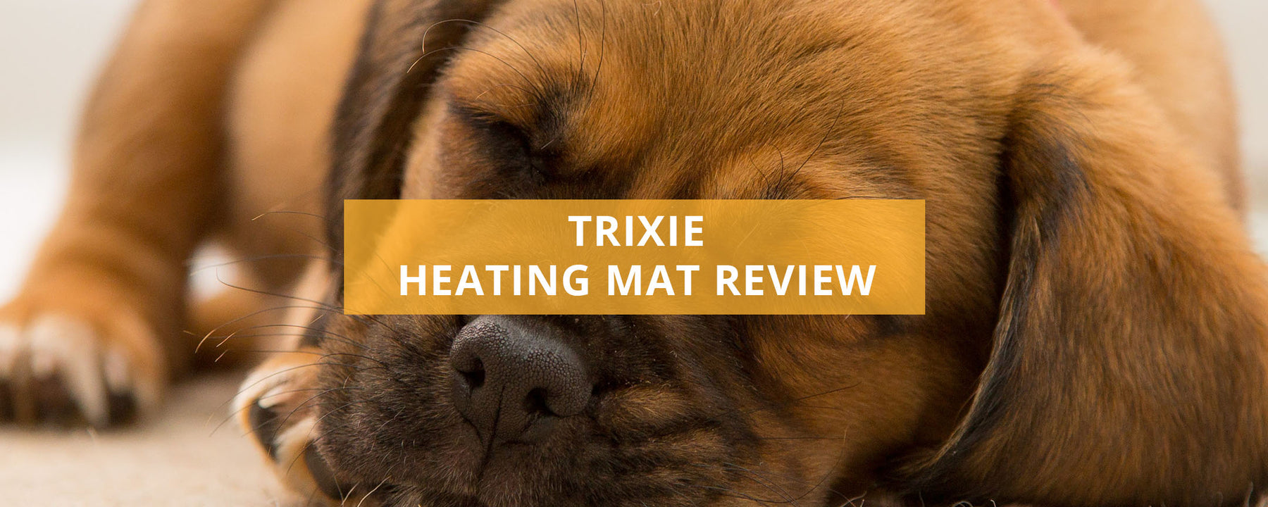 Trixie Heating Mat Review