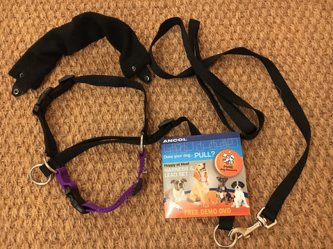 Ancol Happy At Heel Dog Harness And Lead
