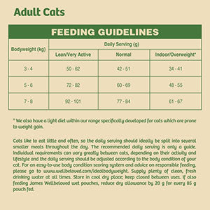 James Wellbeloved Adult Grain Free Dry Cat Food - Turkey Feeding Guide