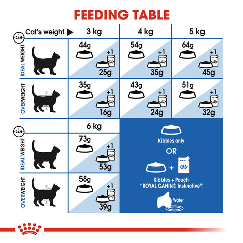 Royal Canin Home Life Indoor Long Hair Dry Cat Food Feeding Guide