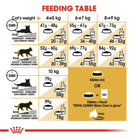 Royal Canin Maine Coon Adult Dry Cat Food Feeding Guide