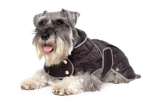 Ancol Quilted Dog Coat - Black / Navy - S / S-M / M / L / XL - PetMonkey
