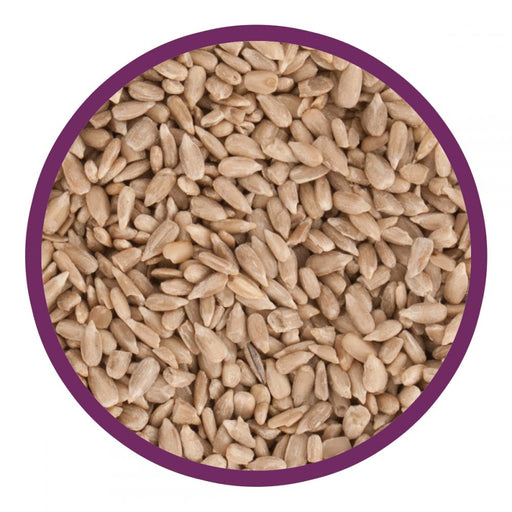 Harrisons Sunflower Hearts - 20kg - PetMonkey