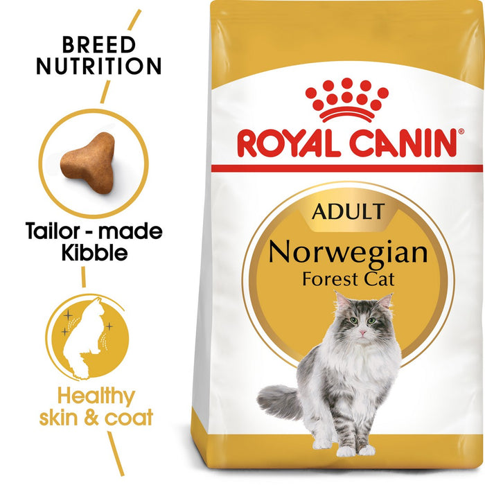 Royal Canin Norwegian Forest Adult Dry Cat Food - 10kg - PetMonkey