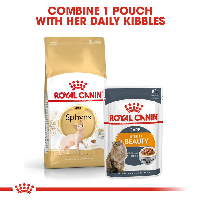Royal Canin Sphynx Adult Dry Cat Food - 10kg - PetMonkey