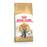 Royal Canin British Shorthair Adult Dry Cat Food - 4kg - PetMonkey