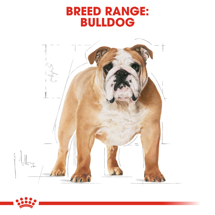 Royal Canin Bulldog Adult Dry Dog Food - 3kg - PetMonkey