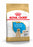 Royal Canin Labrador Retriever Puppy Dry Dog Food - 12kg - PetMonkey
