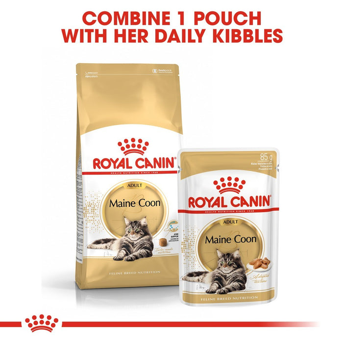 Royal Canin Maine Coon Adult Dry Cat Food - 10kg - PetMonkey
