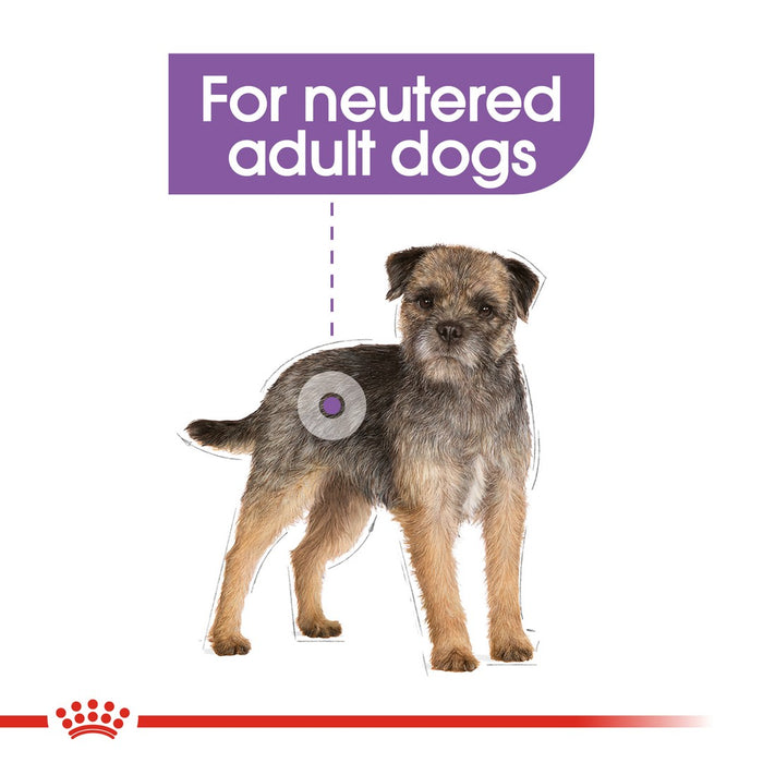 Royal Canin Mini Adult Sterilised Dry Dog Food - 3kg - PetMonkey