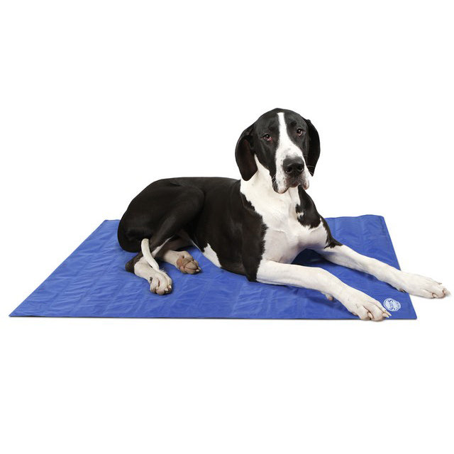 Scruffs Cool Mat - XL - PetMonkey