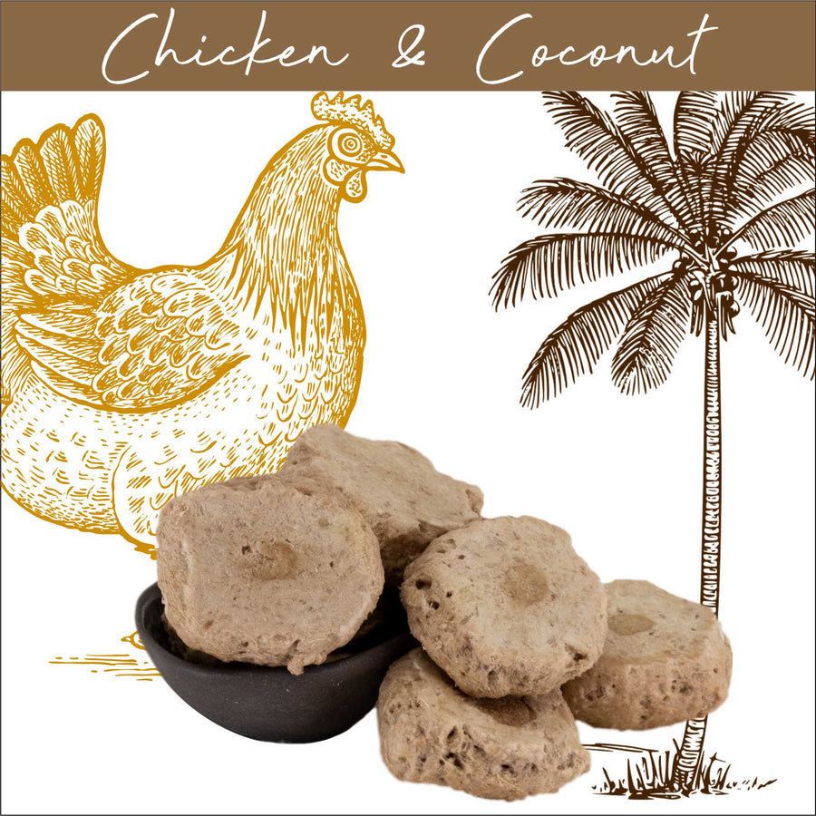 Chicken and Coconut
