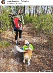 Top 10 Dog Friendly Hiking Trails in Orlando