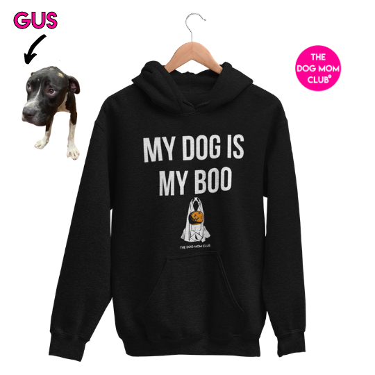 My Dog Is My Boo // This Hoodie Helps Gus <3