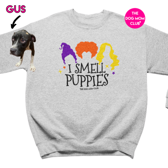 I Smell Puppies // This Sweater Helps Gus <3