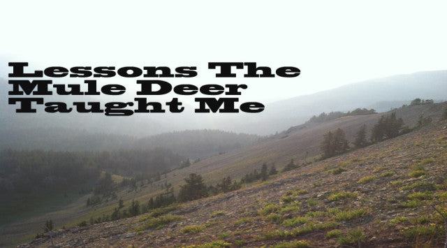 Lessons the Mule Deer Taught Me: Part 1 - By Scott Reekers