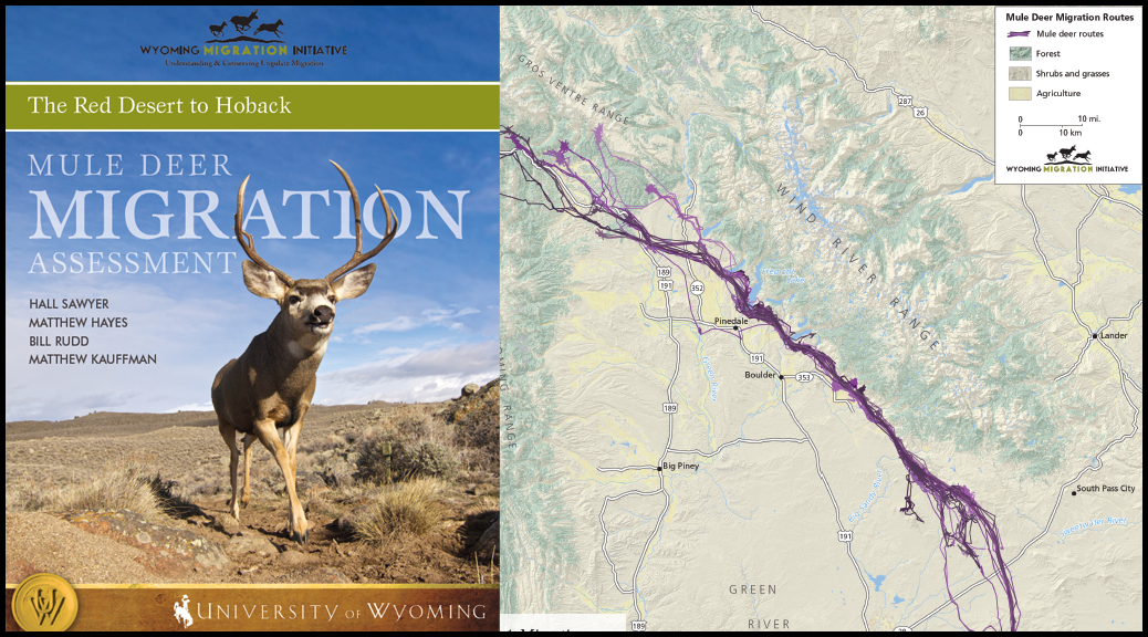 Wyoming Migration Initiative