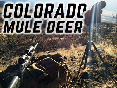 Second Chances - 2016 Colorado Mule Deer Hunt