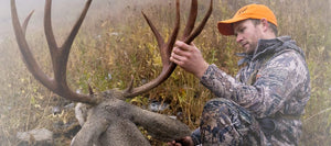 Mountain Mule Deer Hunting