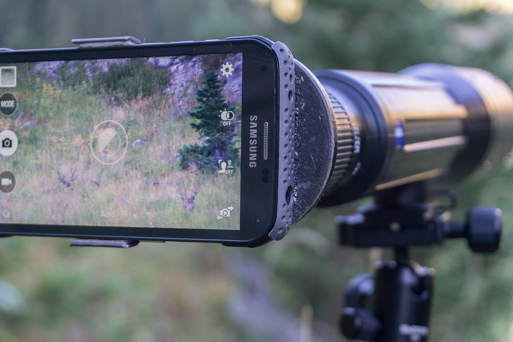 Using ball head for digiscoping