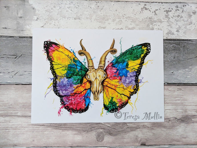 Signed Ram Skull/Butterfly Artwork