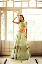 Sage Green Lehnga with Net Blouse