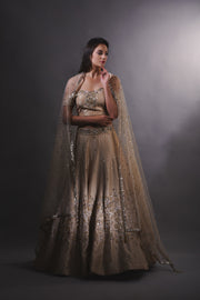 Gold and Rose Gold Cutdana Embroidered Lehenga Set