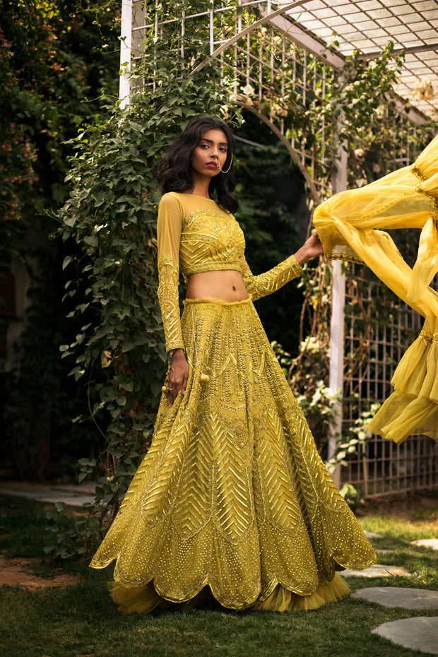 Lime Green & Gold Lehnga Set