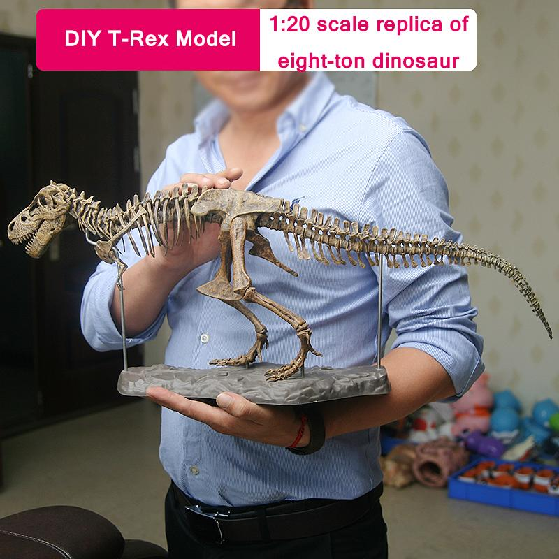 (Buy two get 35 % off & Free Shipping)DIY T-Rex Skeleton Model For Gift/Decoration play with kids