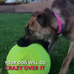 Giant Dog Tennis Ball Toys