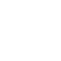 Travel Fox US