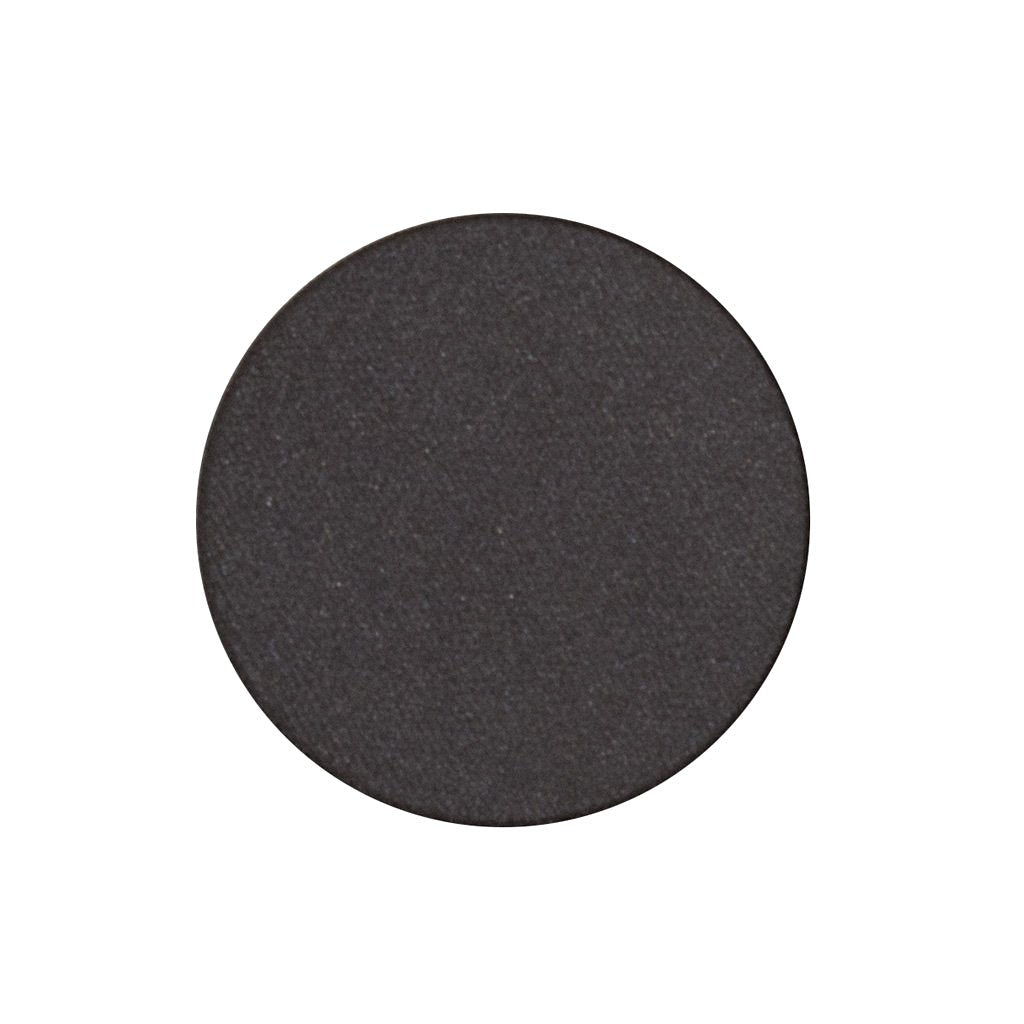 A frosted black single eyeshadow. Beautiful, long-lasting color.