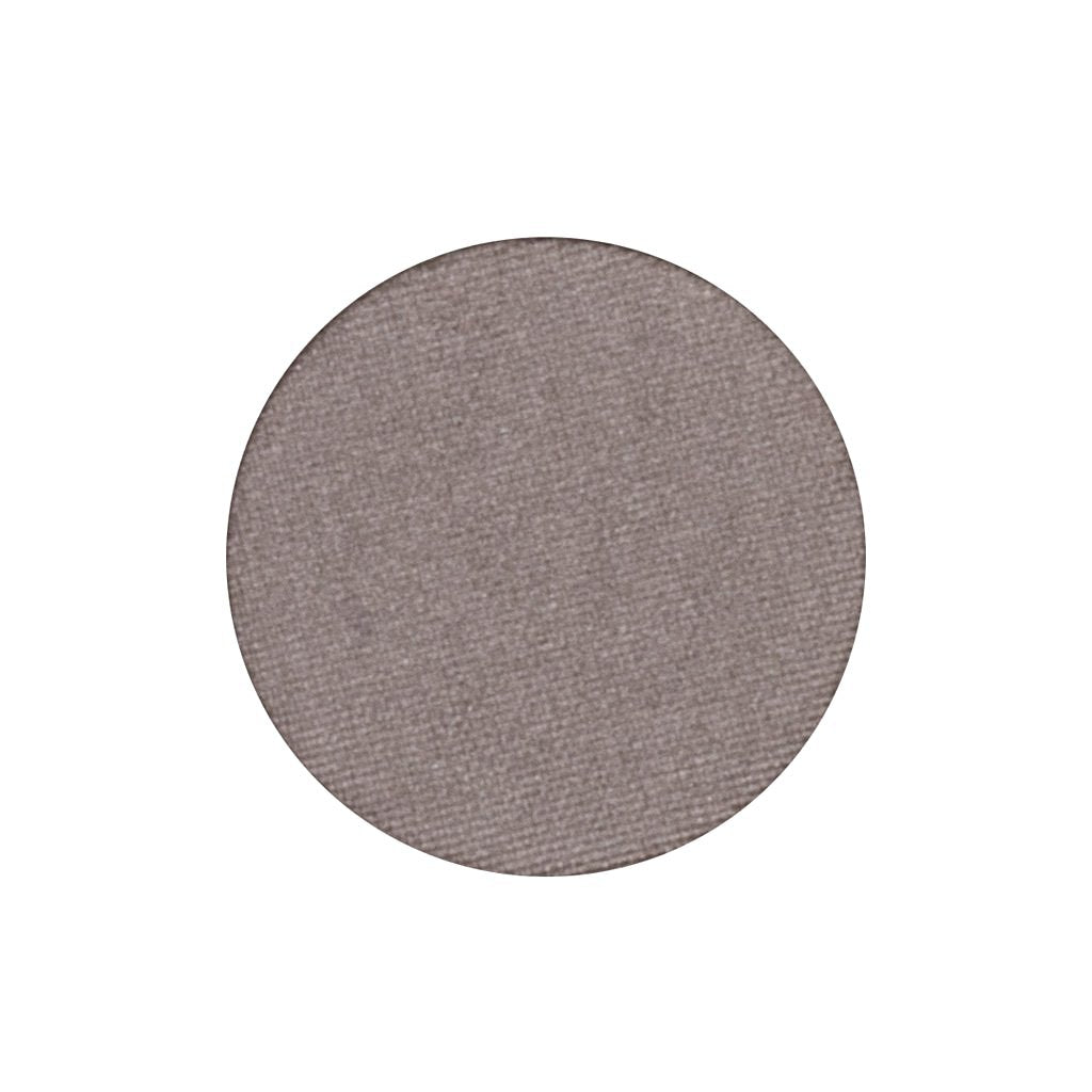A frosted gray single eyeshadow. Beautiful, long-lasting color.