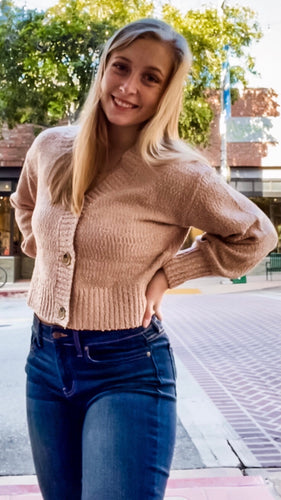 Ash Rose Button Up Sweater
