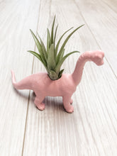 Load image into Gallery viewer, Pink Brachiosaurus Planter with Air Plant