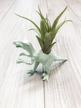 Load image into Gallery viewer, Mint Dinosaur Planter with Air Plant