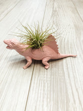 Load image into Gallery viewer, Pink Dinosaur Planter with Air Plant