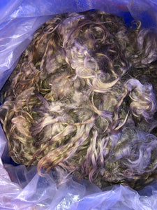 Mohair fleece unwashed