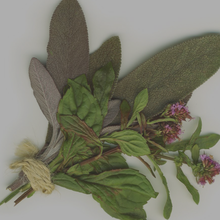 Load image into Gallery viewer, Neapolitan Herb